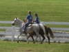 2013-clark-county-horse-show-29