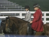 2013-clark-county-horse-show-30