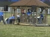 2013-clark-county-horse-show-33