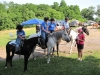 2013-clark-county-horse-show-37