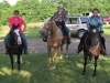 2013-clark-county-horse-show-39