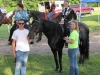 2013-clark-county-horse-show-4