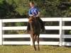2013-clark-county-horse-show-40
