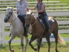 2013-clark-county-horse-show-43
