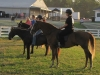 2013-clark-county-horse-show-45