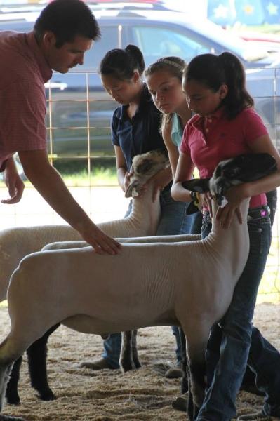clark-county-fair-2013-172