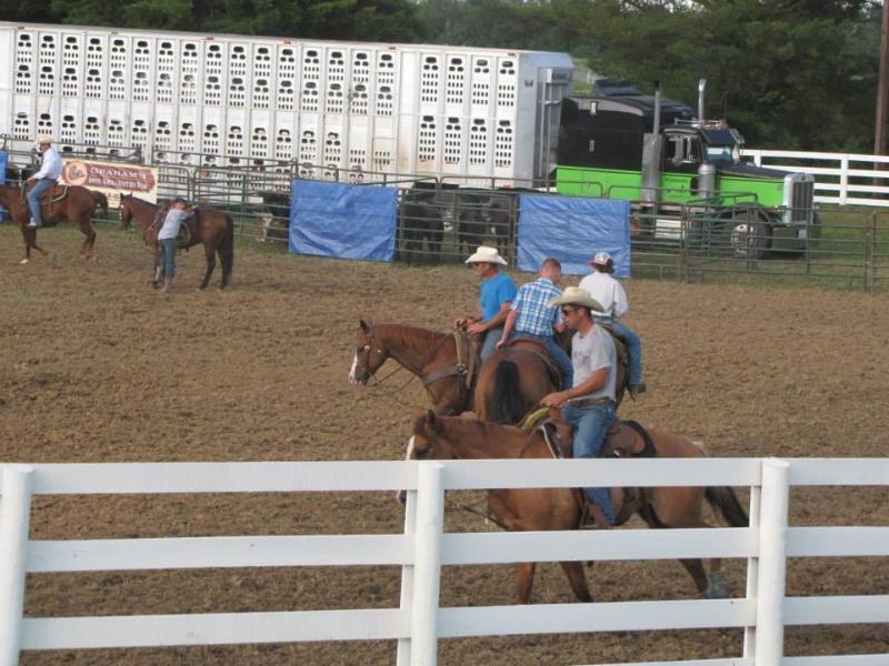 clark-county-fair-2013-27