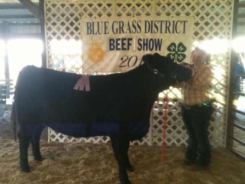 clark-county-fair-2013-29