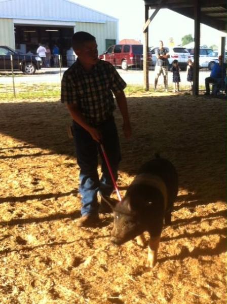 clark-county-fair-2013-65