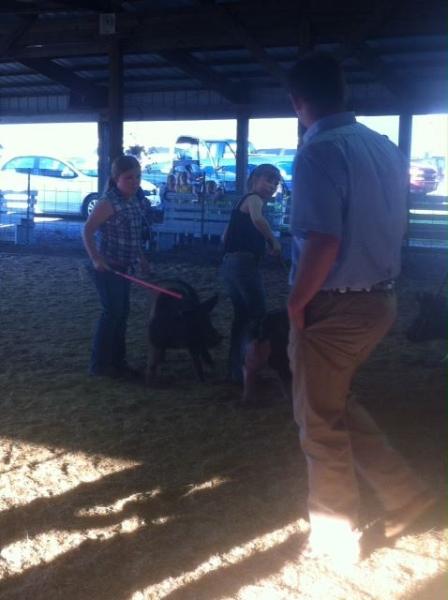 clark-county-fair-2013-68