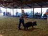clark-county-fair-2013-140