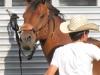 clark-county-fair-2013-166