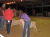 clark-county-fair-2013-53