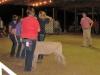 clark-county-fair-2013-75
