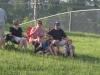 clark-county-fair-2013-8